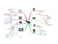 Mind map of Olowalu Town workshops final presentation